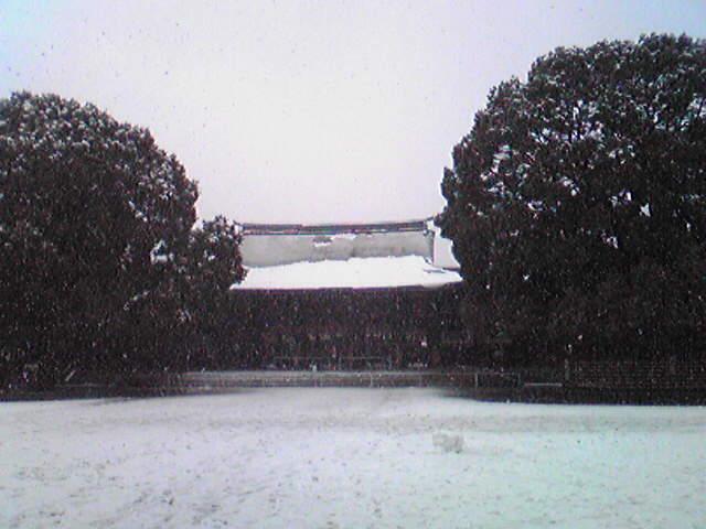 雪の明治神宮