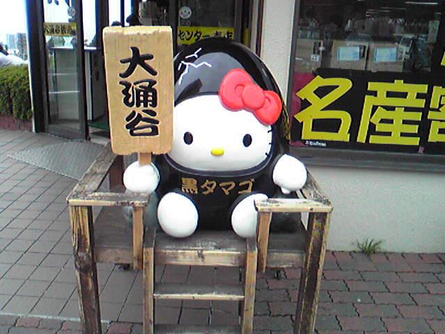 箱根に行ってました。